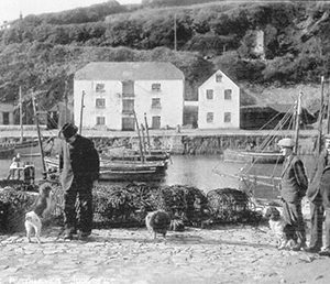 The Warehouse and Ice House from across the harbour in the 1940's.